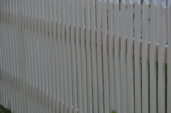 Fences make good neighbours and poor legislators